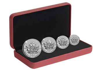 2017 Maple Leaf Coins in Box