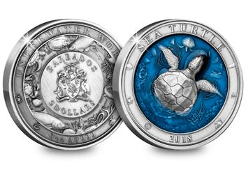 2018 Sea Turtle Coin Both Sides