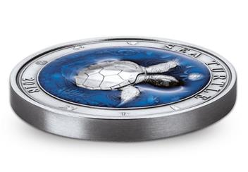 2018 Sea Turtle Coin Flat