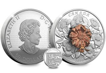 2018 Royal Canadian Mint Bee And Bloom Coin Both Sides 10P